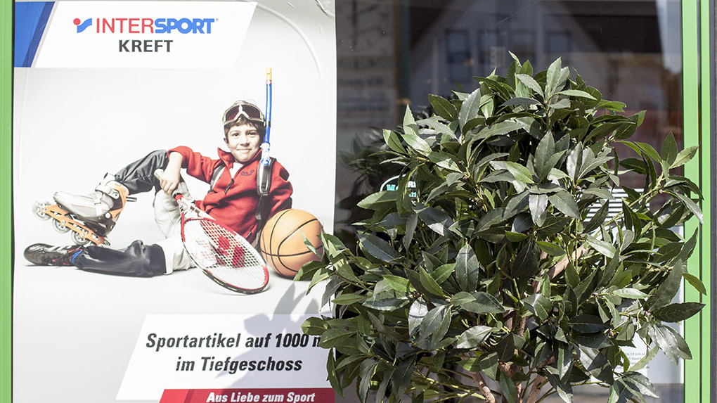 Intersport Kreft